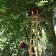 woody-park