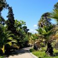 jardin-botanique-villa-thuret-antibes