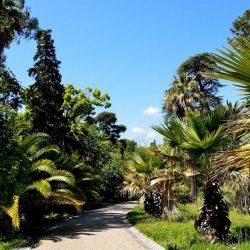 Jardin de Thuret, jardin d'acclimatation de la Côte d'Azur
