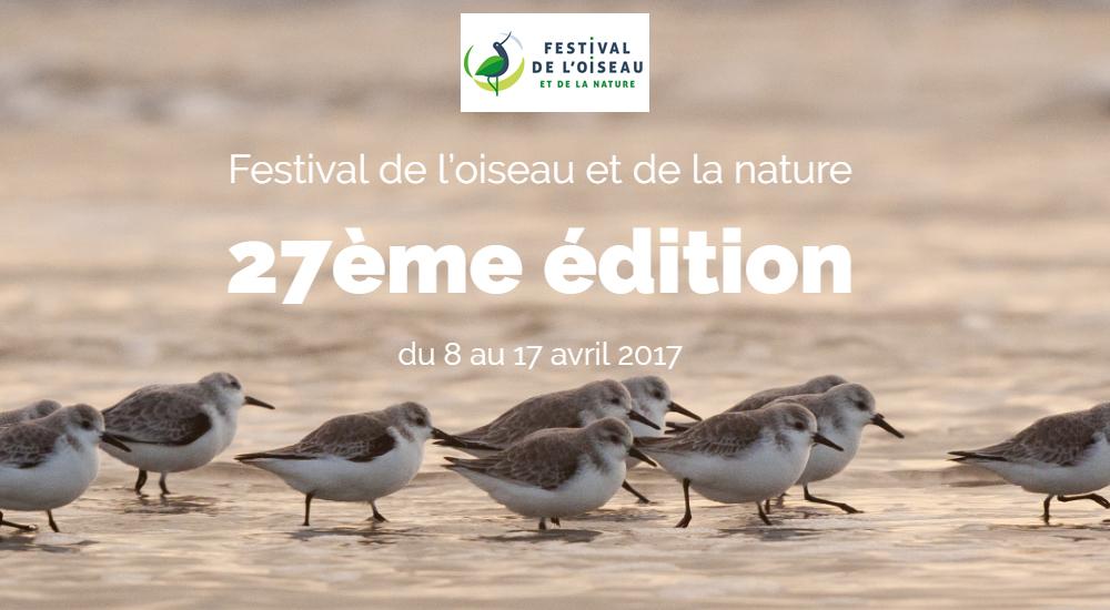 evenement-sigma-festival-oiseau