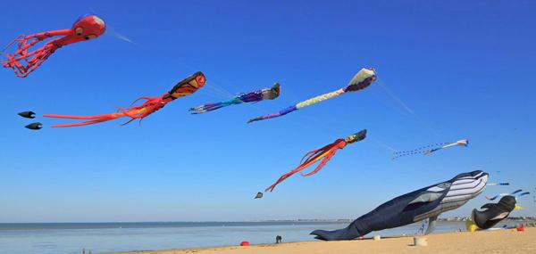 festival-cerf-volant