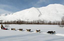 MOLINES Maeva hiver