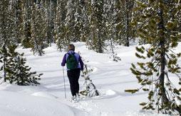VILLARD DE LANS Le Ski Du Nord Au Sud